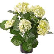 GrabpflanzenHortensien Kunstpflanzen increme-grün Trauer Shop