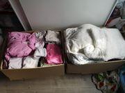 Riesen Kleiderpaket Baby Mädchen 50