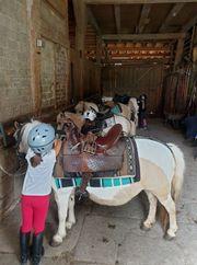 Schnupper-Ponyreit-Tag auf dem 74538 Pferdehof