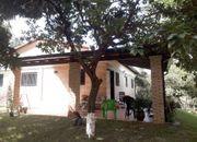 Haus mit Gartenhaus in San