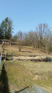 Freizeitgrundstück in Bad Mergentheim