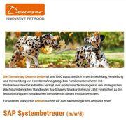 SAP Systembetreuer