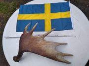 MADE IN SWEDEN ELCH SCHAUFEL