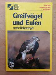 Greifvögel und Eulen sowie Rabenvögel