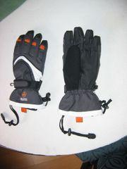 Skiausrüstung Damen und Herren alpin