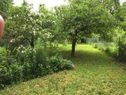 Freizeit- Gartengrundstück