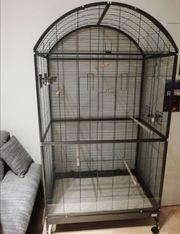 Papageien Vogel Voliere Käfig