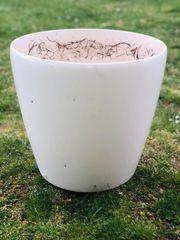 Weisser Blumentopf Pflanzentopf rund und
