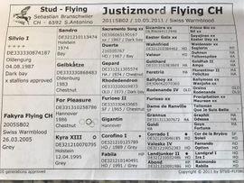 Bild 4 - Justizmord Flying Silvio For Pleasue - Schweizerthal