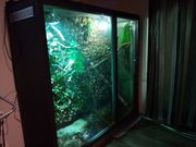 Terrarium selbstgebaut