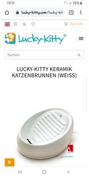 Katzenbrunnen Keramik