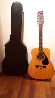 Gitarre 12 Saiten