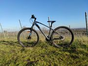 Mountain Bike 29 Zoll Größe