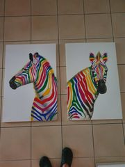 Zebra Bunt Leinwandbilder