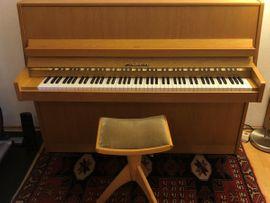Tasteninstrumente - Einsteiger Klavier FAZER mit passendem