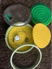Inkubator Reptilien Schildkröten