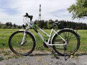 Fahrrad KTM Country Star 26