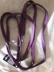 Hundeleinen und Halsbänder ab 5EUR