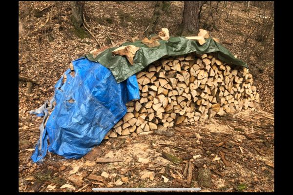 Verkaufe bestes trockenes Brennholz 35cm