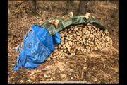 Verkaufe bestes Brennholz 35cm Scheite