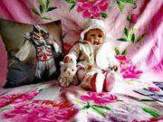 Porzellan Babypuppe Künstlerpuppe Nina ein