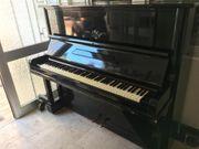 Klavier von Scharf Hauk
