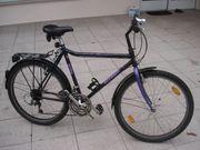 Herrenrad Schauff