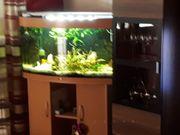 Eheim Aqarium 180 liter