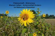 Blühwiese Blühfläche Blühweide Patenschaft - Rettet