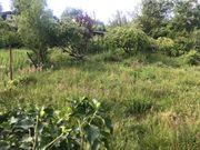 Gartengrundstück Pacht Mitbenutzung Handschuhsheim