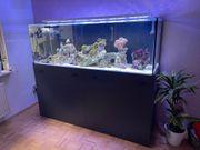 Großes Aquarium mit Unterschrank