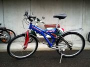 Damen Bike