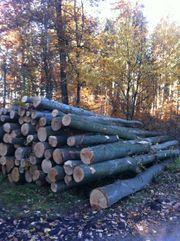Brennholz Buche Eiche für den