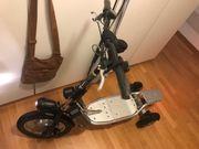 Elektro Trotti Bikeboard S500X