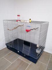 Vogel Käfig groß