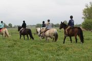 Reiterferien für Kinder und Jugendliche