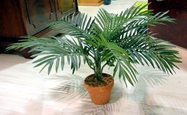Pflanzen - Kunst Palme in Tontopf 65cm