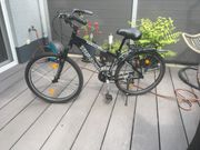 Mountainbike Damen Marke Triumph 26