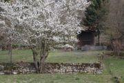 Gartengrundstück 692 m² in Besigheim