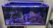 Eheim proxima 250 reef aqua