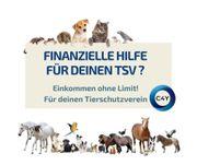 Aufbau von Spenden für Tierheime
