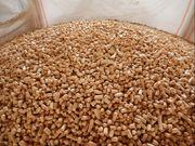 Agropellets - Biogasanlage Kraftwerk Energiewirtschaft Landwirte