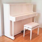 SAUTER Klavier 120 Klassik R²