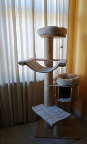 Stabiler XL Kratzbaum Massivholz Holz