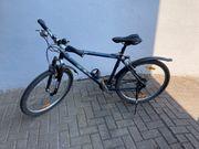 Mounainbike Comp SX blau 26