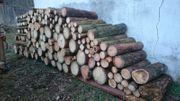10 Ster Brennholz Meterstücke zu
