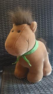 Hotte Pony
