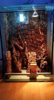 Terrarium Baumrindestücke