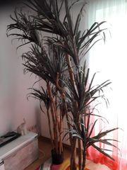 2 künstliche Palmen