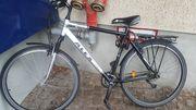 Herrenfahrrad Mountainbike ALEX
